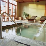 Polished Pools has affordable services from H.O.A.'s, apartment buildings, hotels, parks, gyms, swimming schools etc.